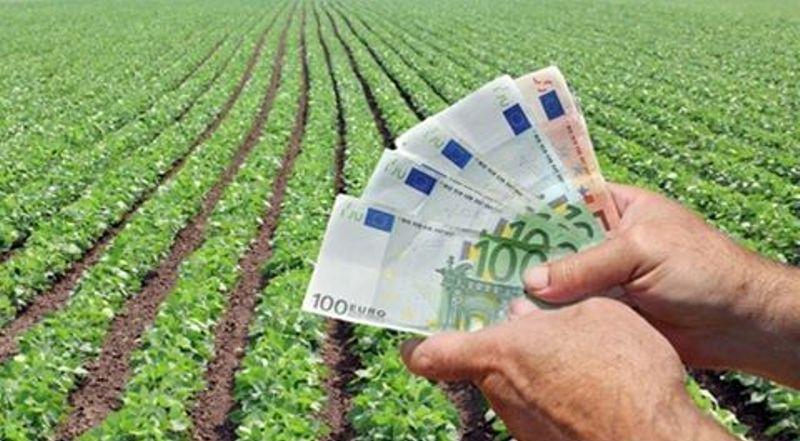 subventii-agricultura-agrotex